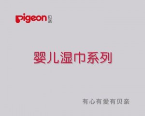 PIGEON06