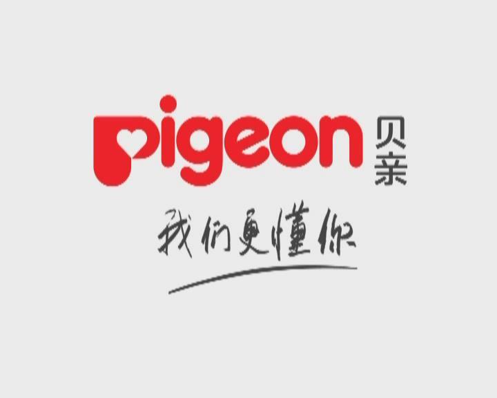pigeon01